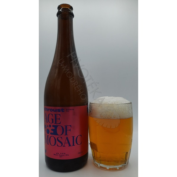 Létající Chroust Age Of Mosaic West Coast IPA