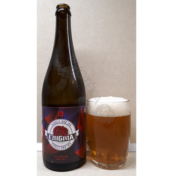 Wywar Enigma Single Hop IPA 13°