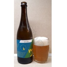 Single Hop Ale Citra 12° MadCat