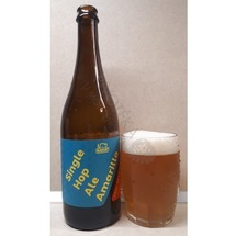 Single Hop Ale Amarillo 12° MadCat