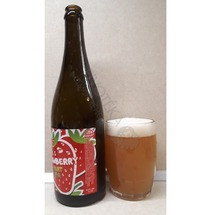 Wywar Strawberry Fruit IPA 15°